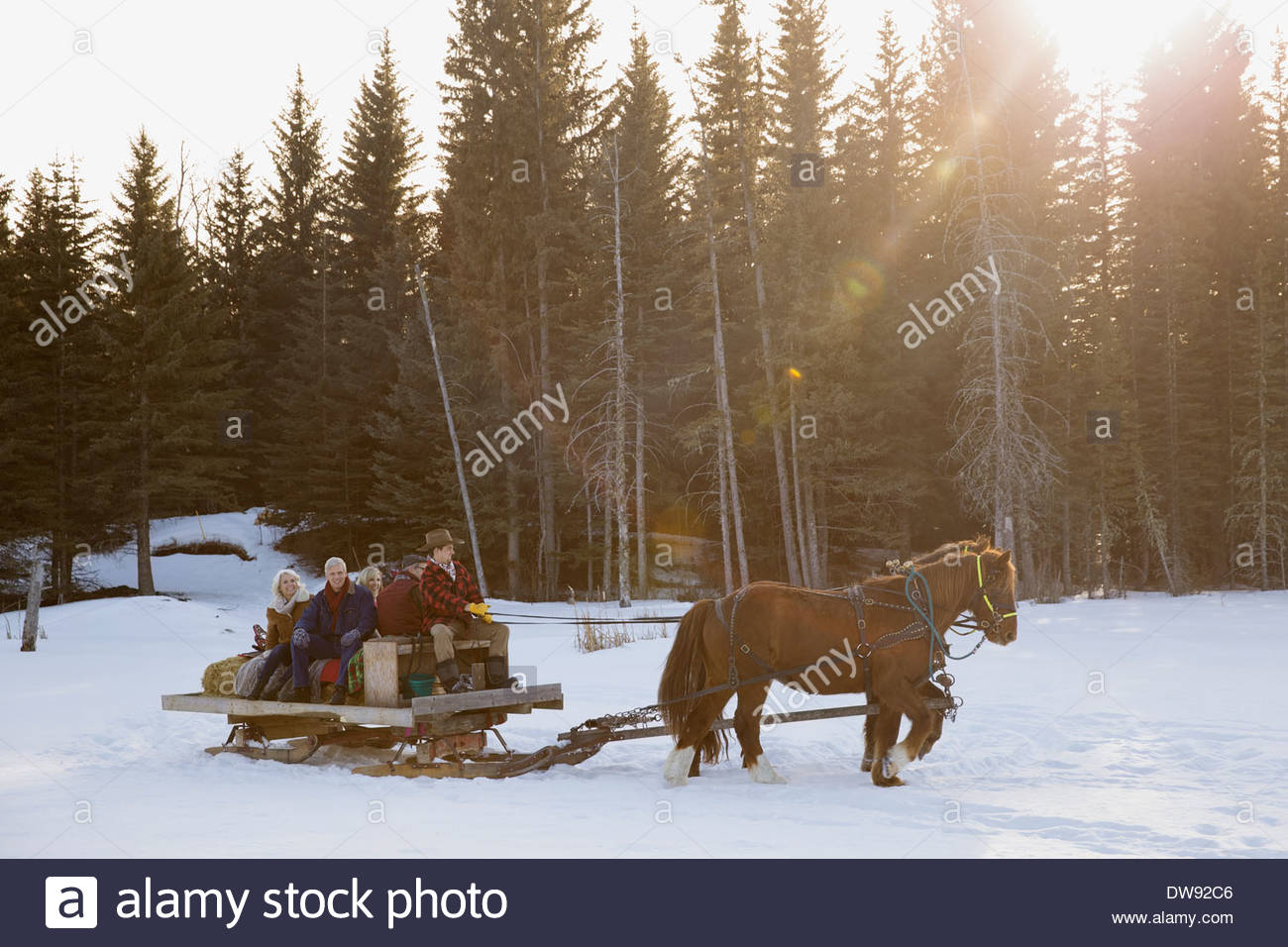Friends riding horse-drawn sleigh in snow Stock Photo