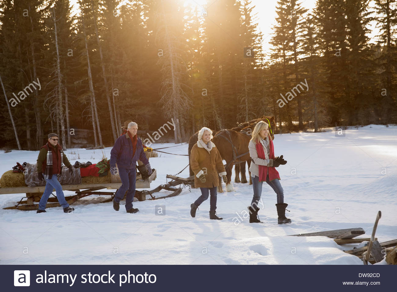 Friends walking by horse-drawn sleigh in snow Stock Photo