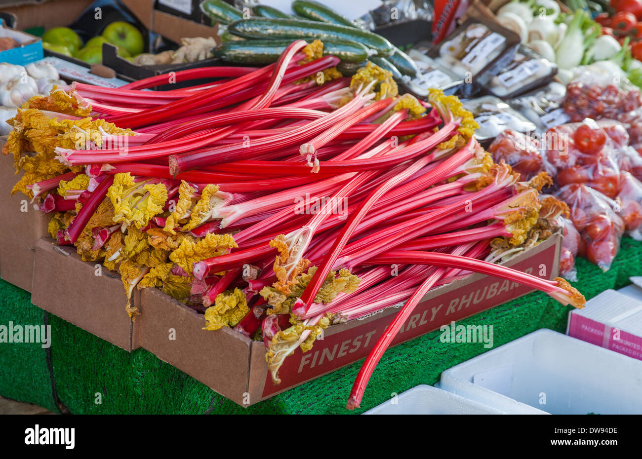 Rhubarb on a market stall - Stock Image