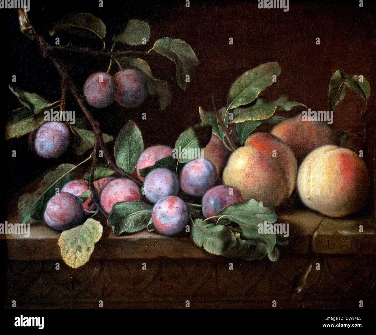 Still Live  Prunes et Peaches  Pierre Dupuis by 1610 - 1682  France French - Stock Image