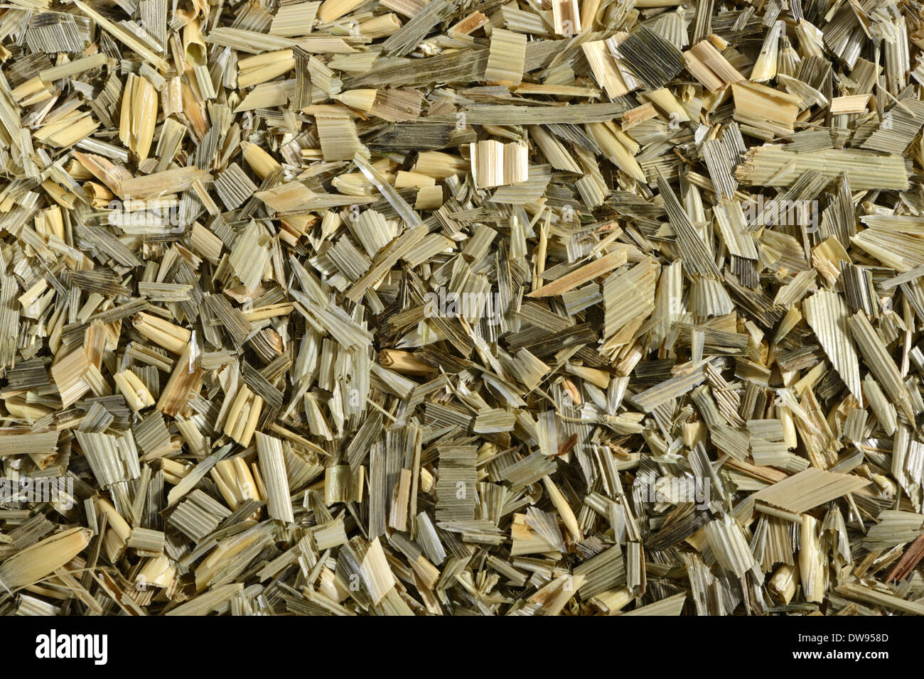Oat straw - Stock Image
