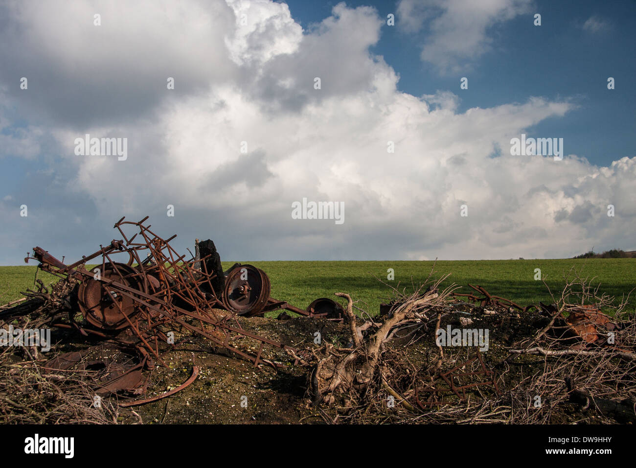 Left to rot - Stock Image