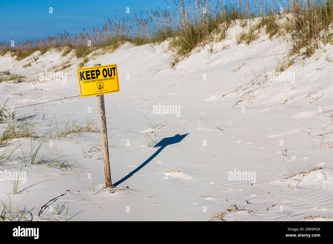 Sign warns to keep out of dune restoration area an beach at Gulf Shores, Alabama - Stock Image
