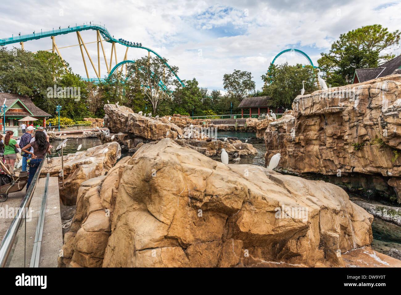 Roller Coaster Seaworld Stock Photos & Roller Coaster Seaworld Stock ...