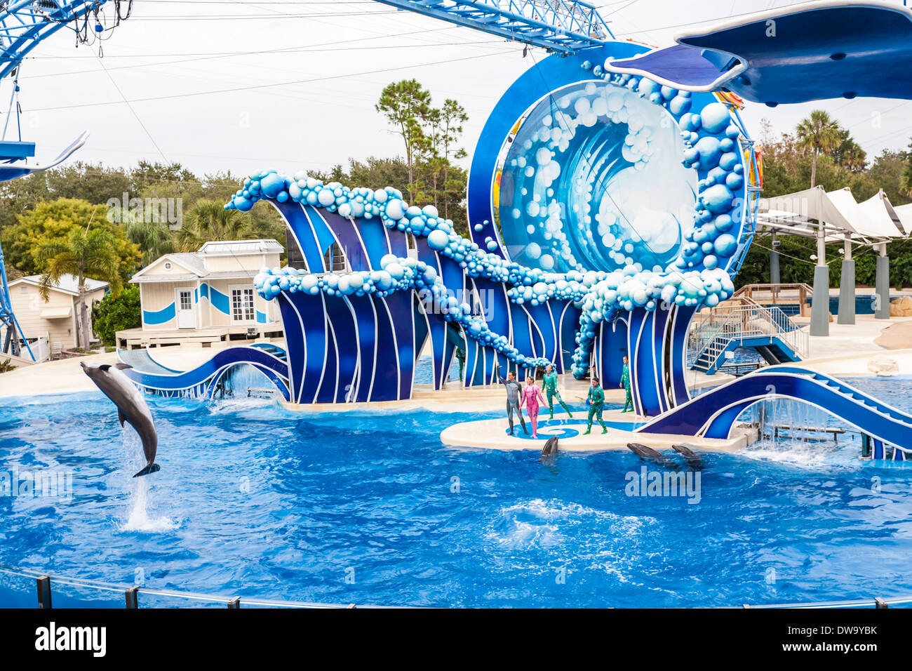 Animal trainers performing with dolphins at the Blue Horizons show in SeaWorld, Orlando - Stock Image