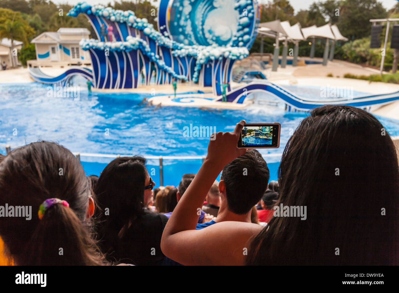 Park guest taking pictures with cell phone camera at the Blue Horizons show in SeaWorld, Orlando - Stock Image