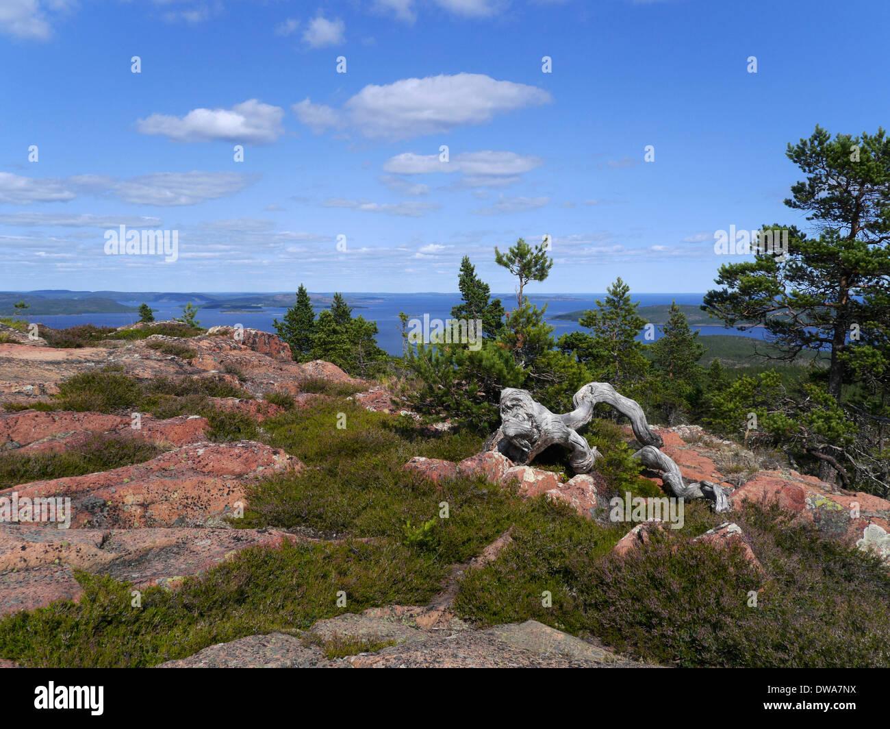 mjältön, höga kusten (high coast), västernorrlands län, gulf of bothnia, sweden - Stock Image