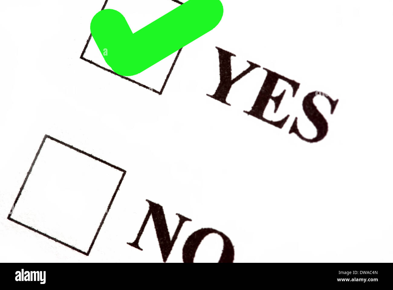 Yes and no boxes, yes voted. Stock Photo