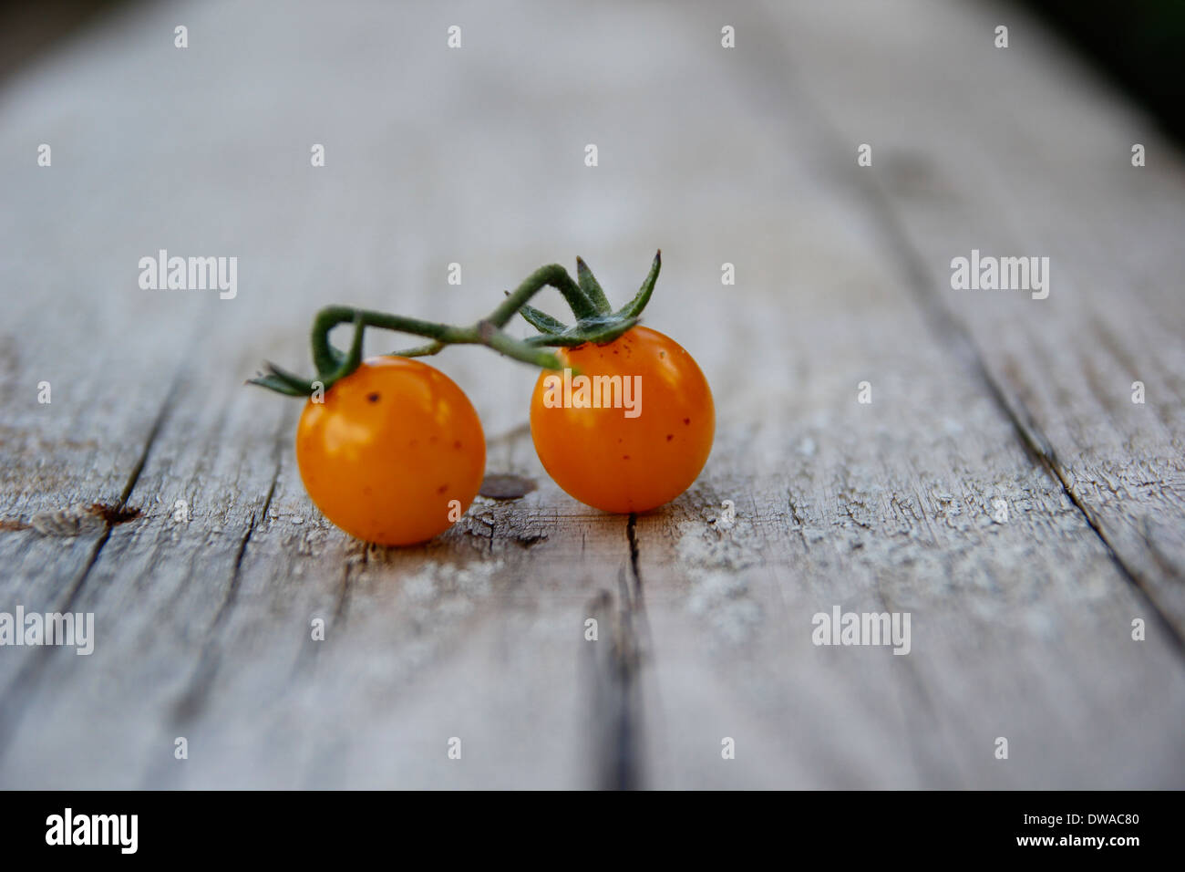 tomato, tomatoe, ketchup, fresh, one, cut, food, white, isolated, wet, ripe, on, green, dropped, red, vegetable, half, piece, co - Stock Image