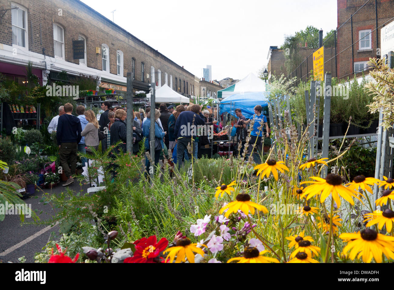 Columbia Road Flower Market Bethnal Green London England UK Flowers on stall in foreground people browsing in background - Stock Image
