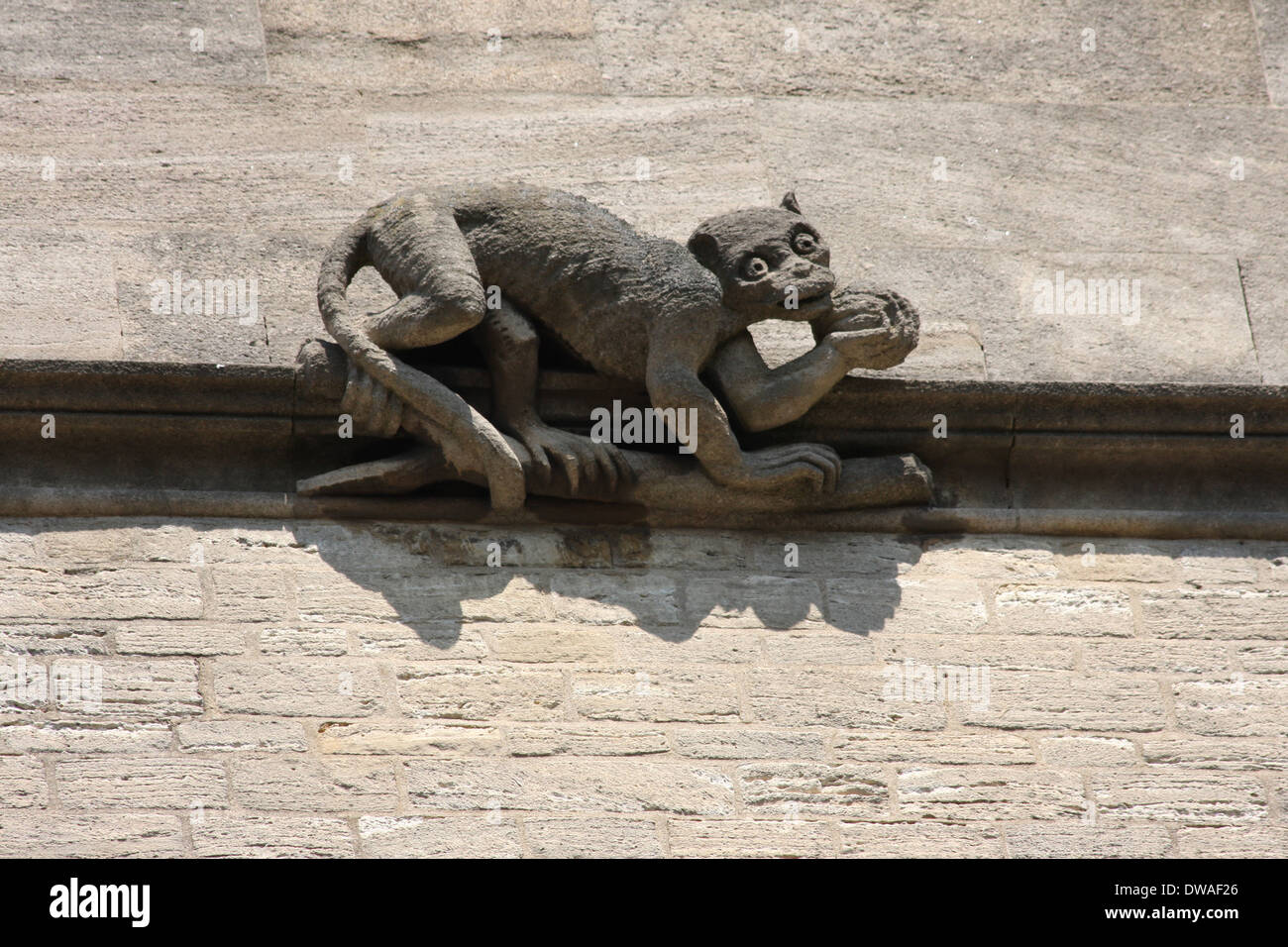 A Gargoyle at Brasenose college Oxford. - Stock Image