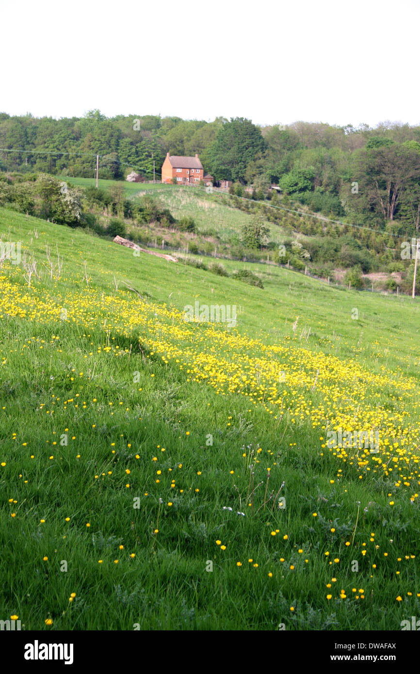 A meadow and distance house in the village of Combe in Oxfordshire. - Stock Image