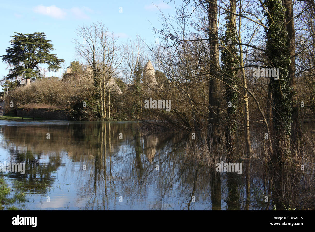 A flooded meadow in Witney Oxfordshire. - Stock Image