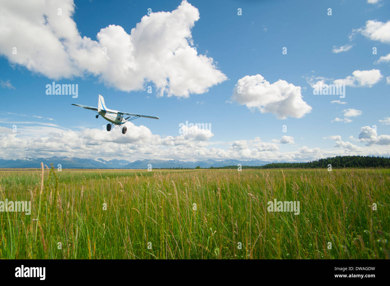 Chet Harris overflying low over a grass strip in his Maule M5 airplane, Alaska - Stock Image