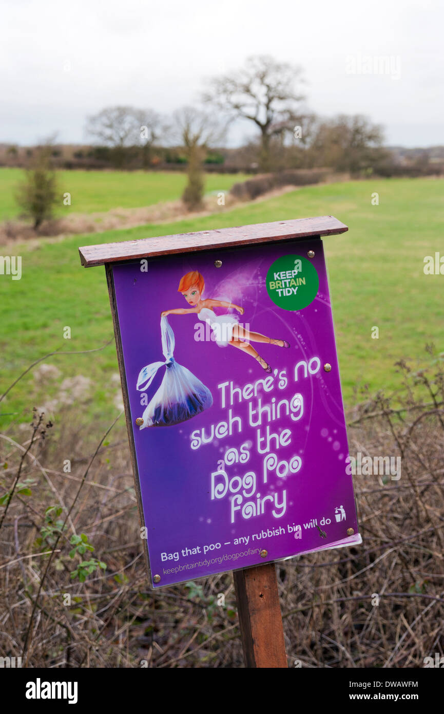 How To Stop Dog Fouling In House