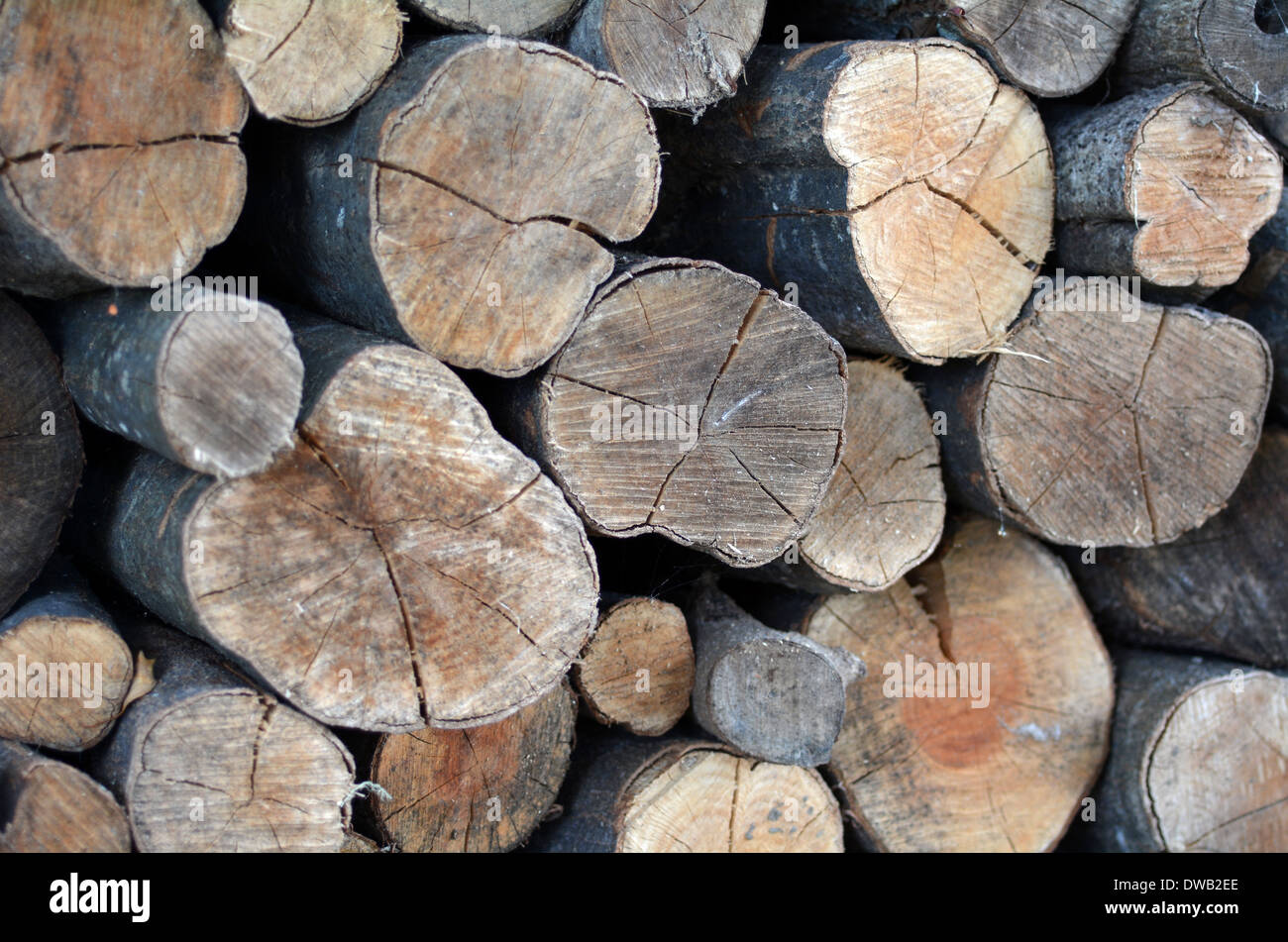 Firewood logs stacked up in a pile. - Stock Image