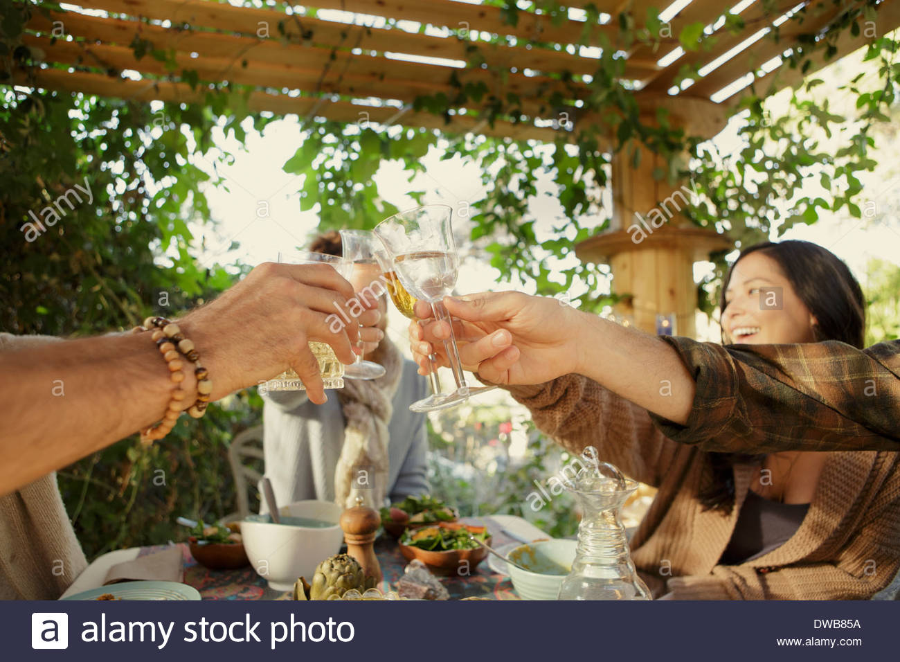 Friends raising a toast at garden party - Stock Image