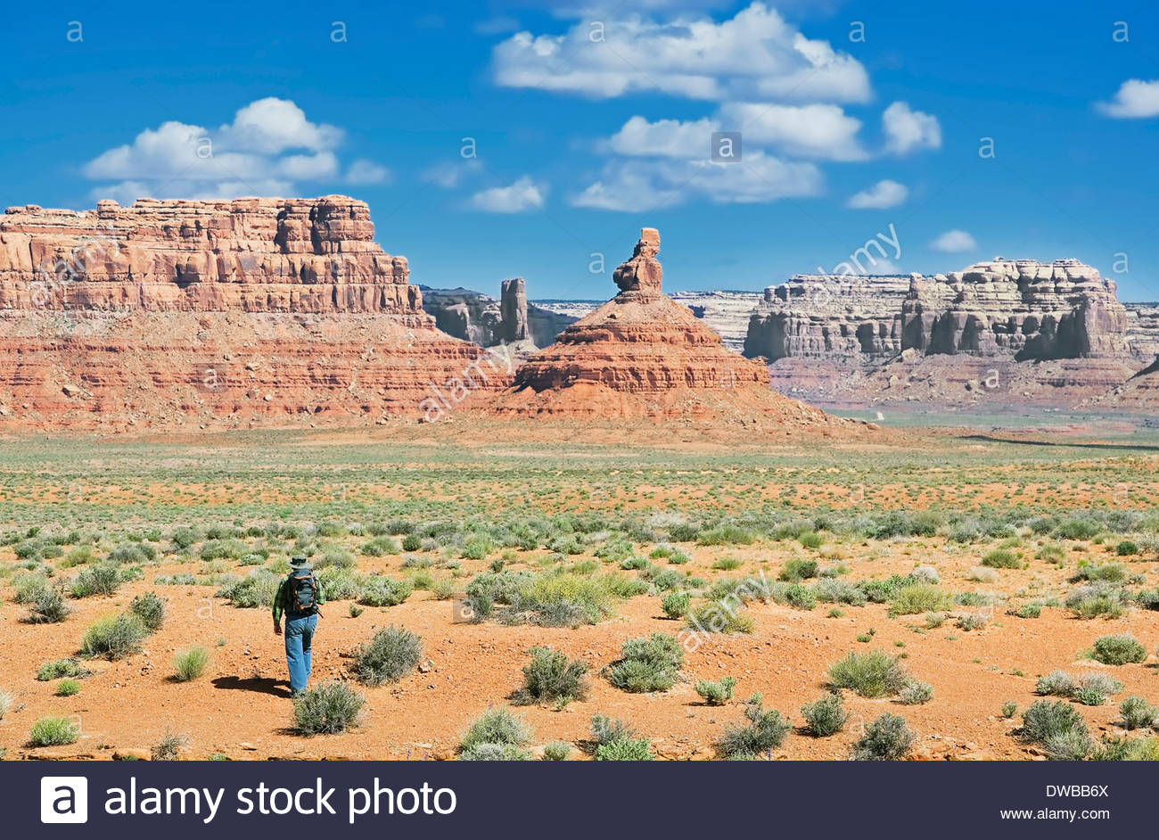Trekker, Valley of the Gods, Utah, US - Stock Image