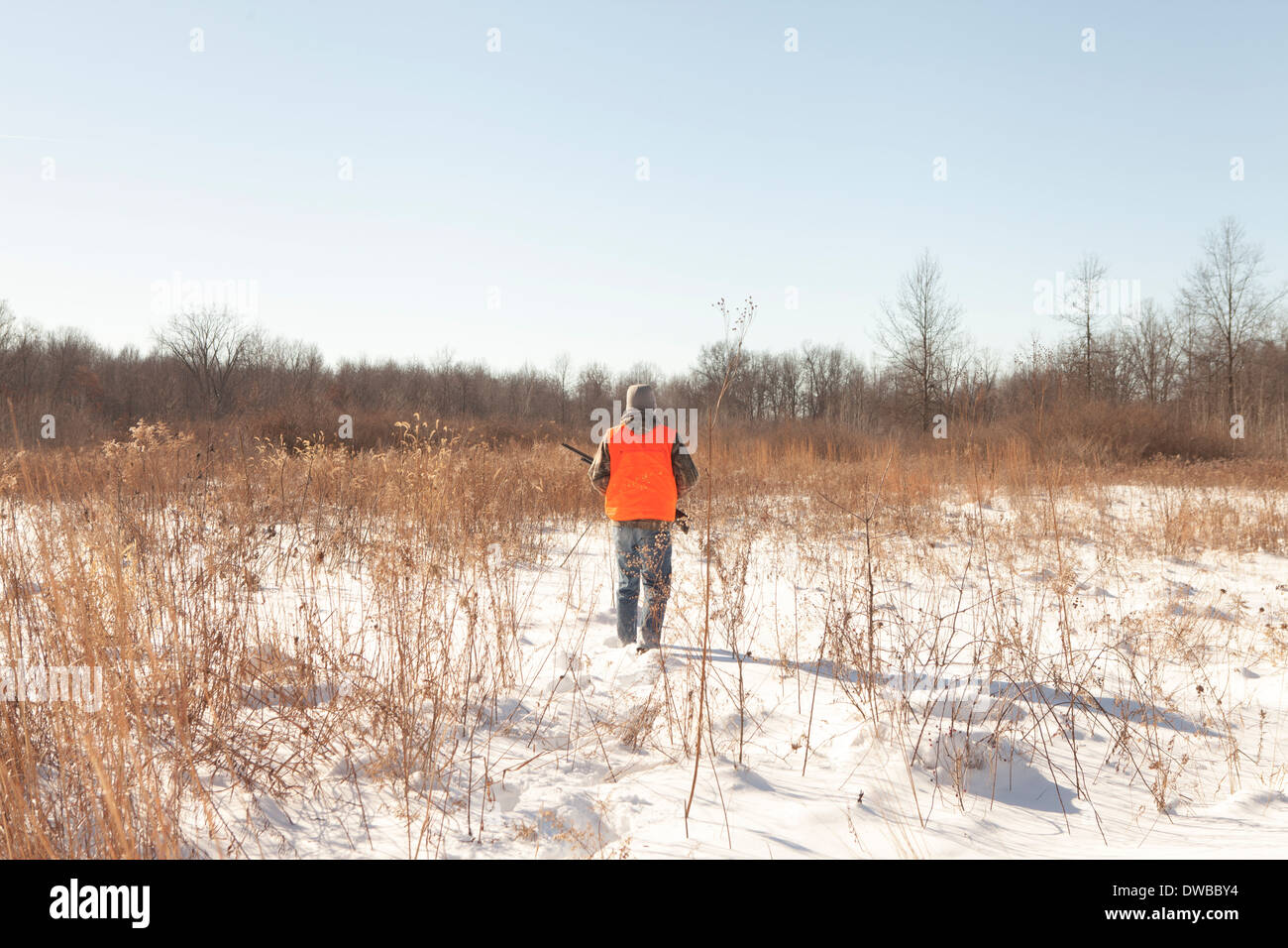 Teenage boy out hunting in Petersburg State Game Area, Michigan, USA - Stock Image
