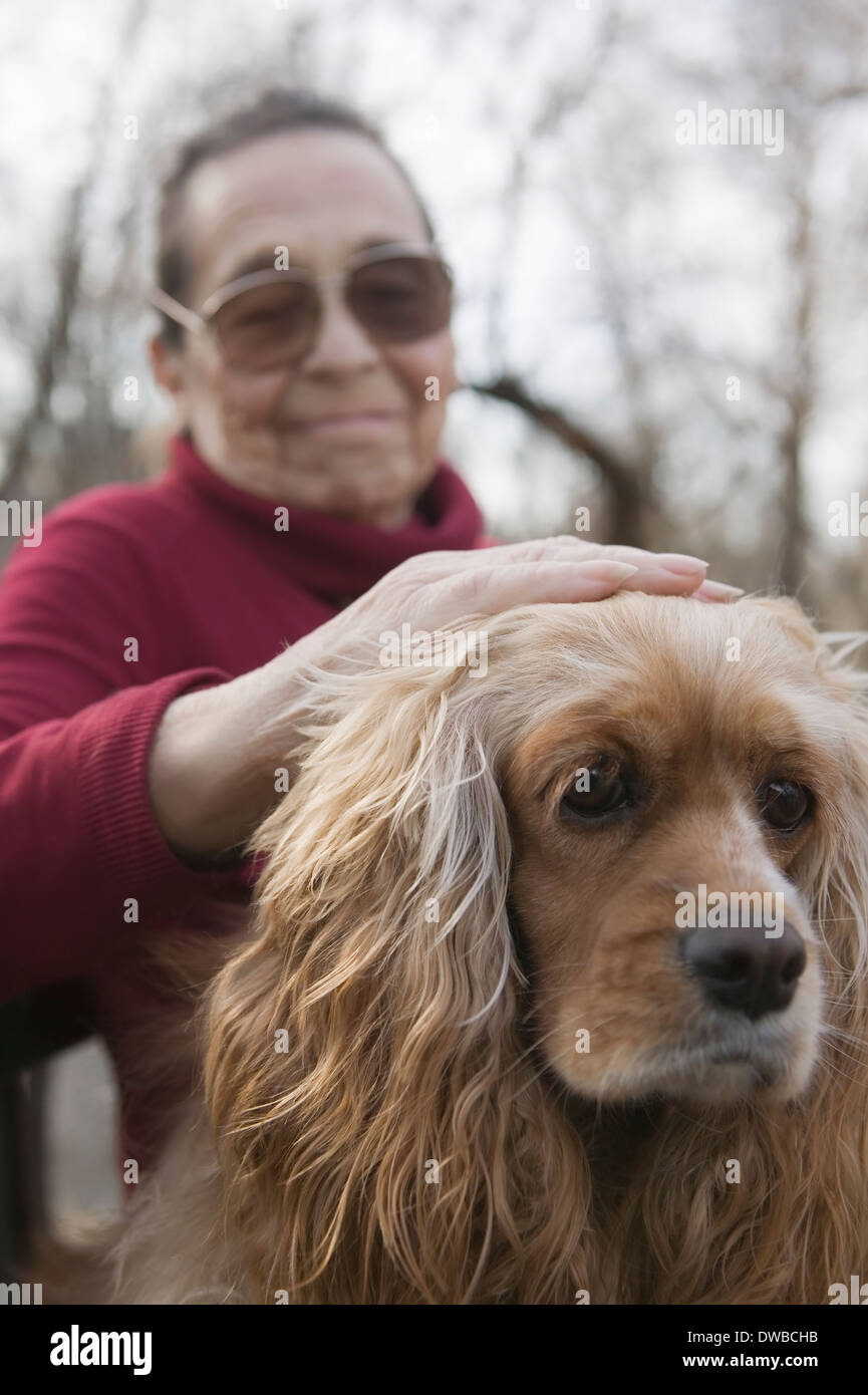 Senior woman patting dog - Stock Image