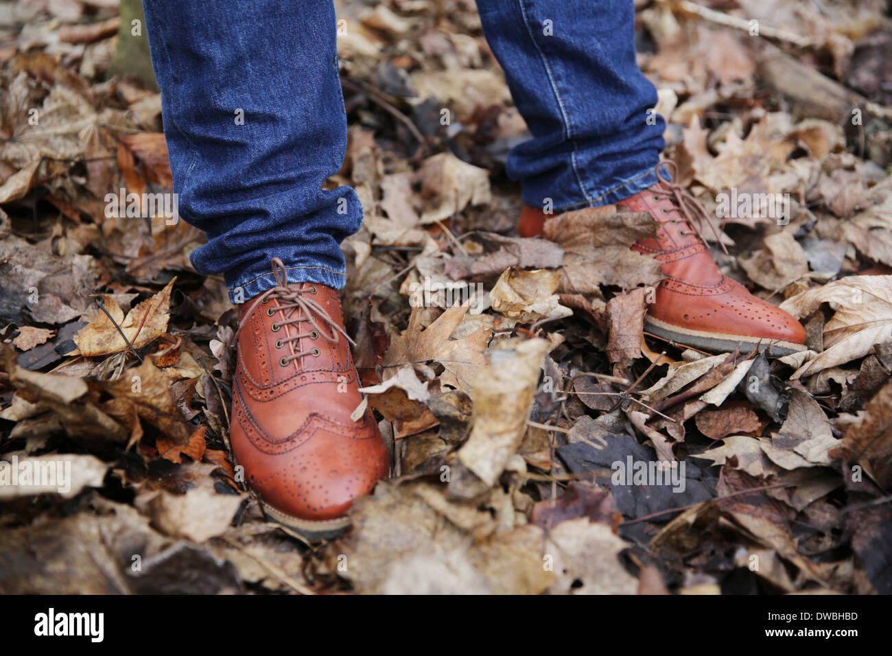 Precious leather shoes of man standing in the wood - Stock Image