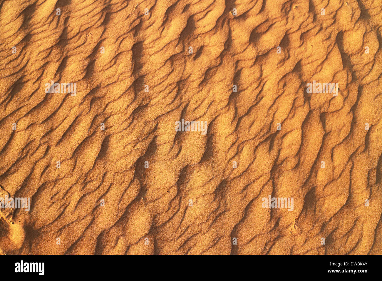 Wüste Rub al Khali - Ras al Khaima - Stock Image