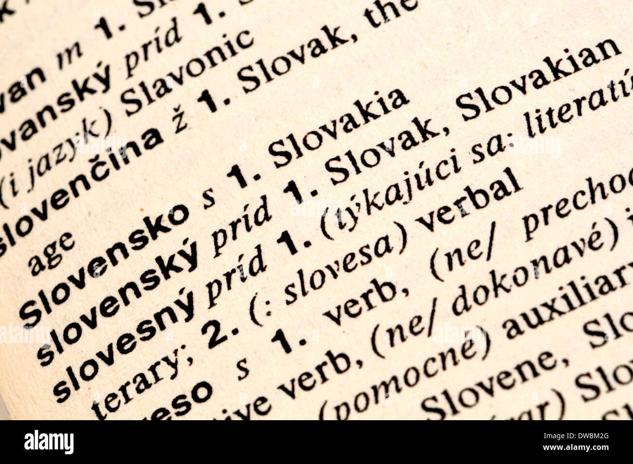 english slovak dictionary entries for slovak and slovakia stock photo 67254728 alamy. Black Bedroom Furniture Sets. Home Design Ideas