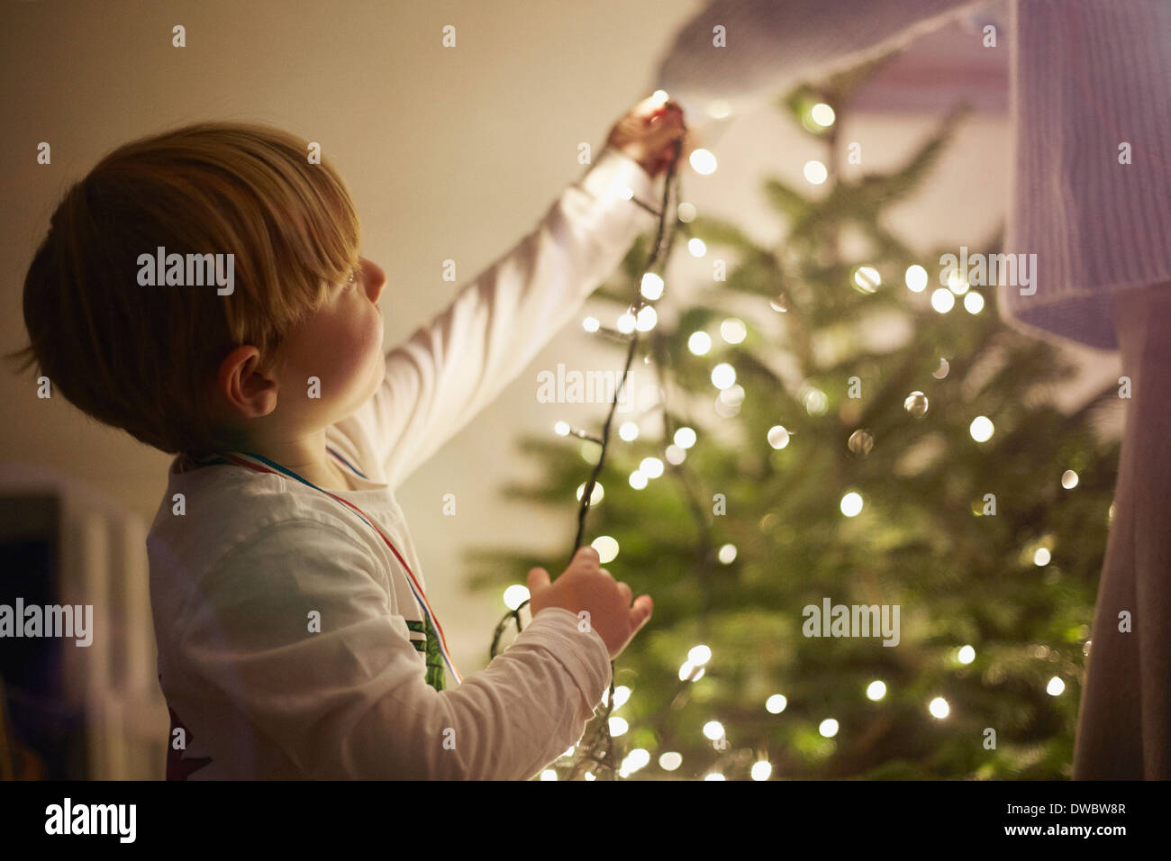 Young boy putting up christmas tree lights - Stock Image