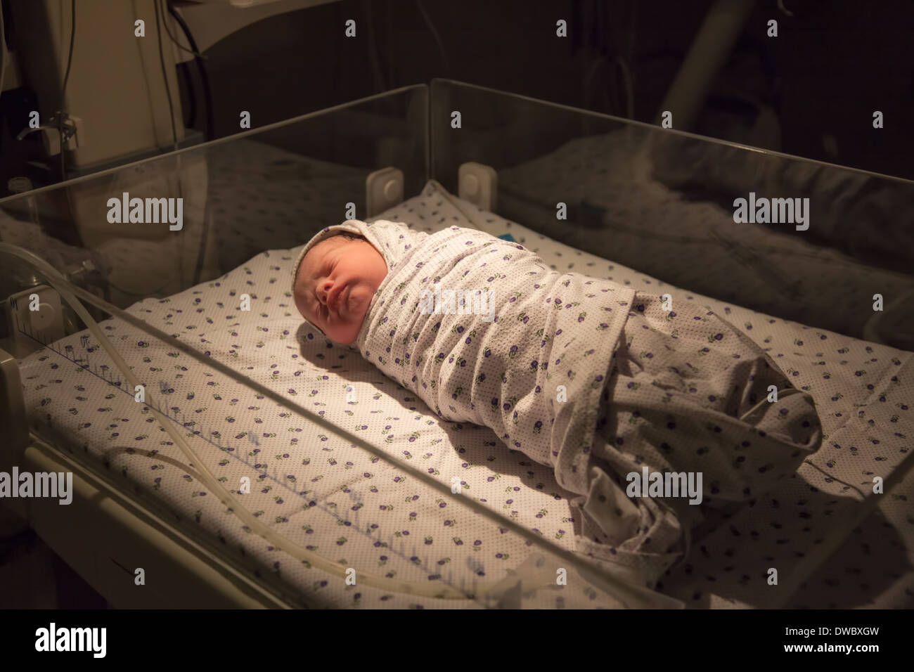 Just born baby boy at ICU in hospital. - Stock Image