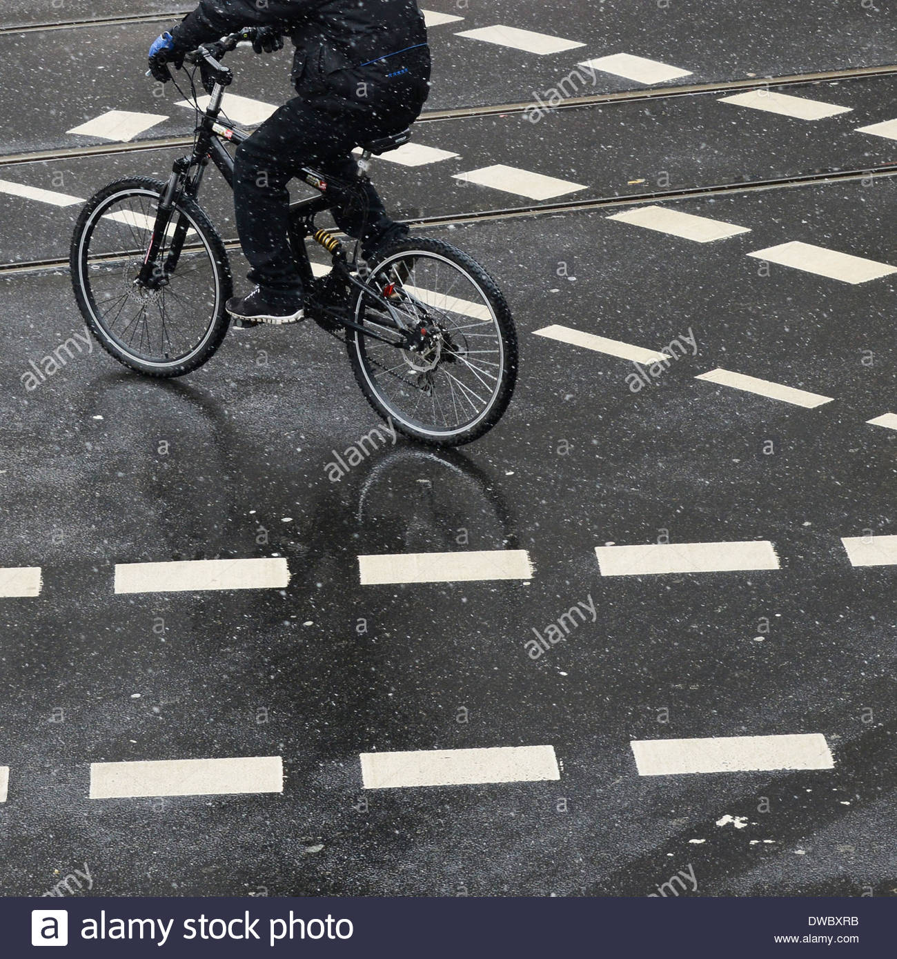 Low section of person cycling on street with markings - Stock Image
