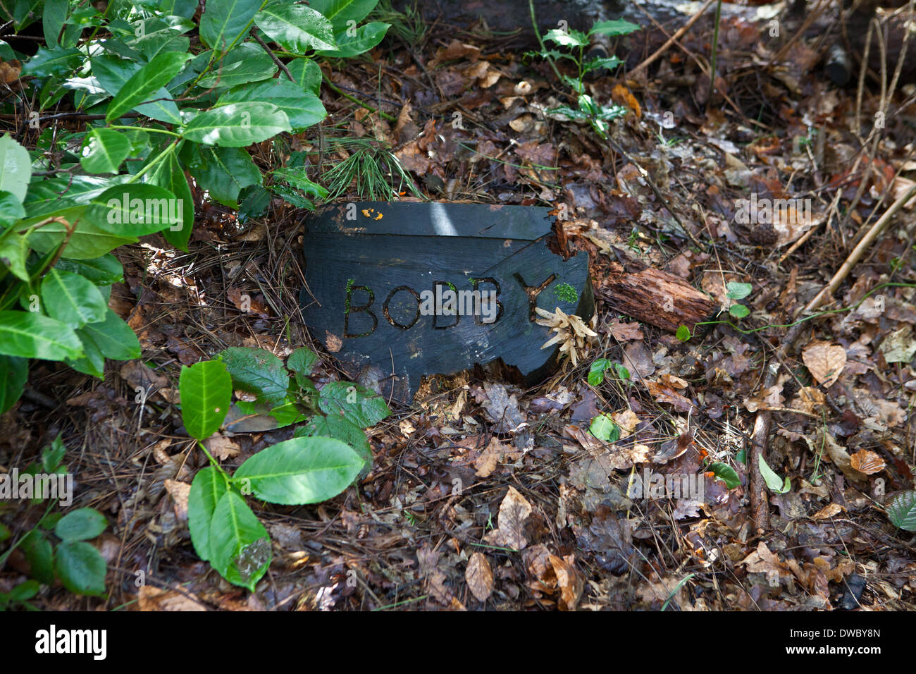 A pet cemetery in a wood, with a tree trunk tomb stone with pets' name inscribed. Stock Photo