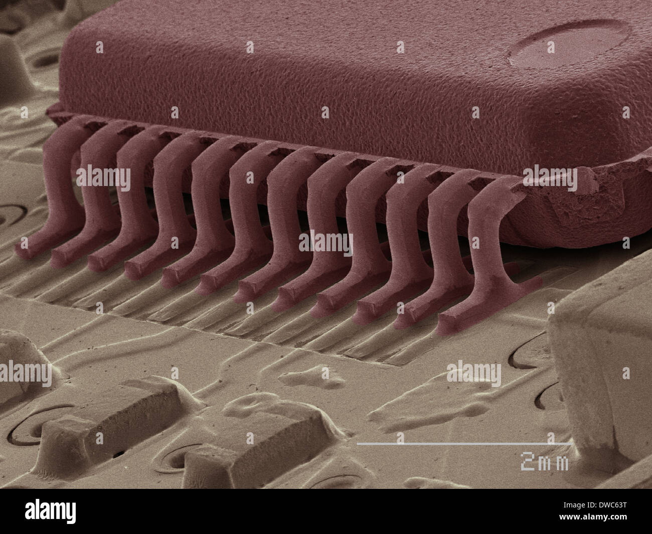 Coloured SEM of computer chip - Stock Image
