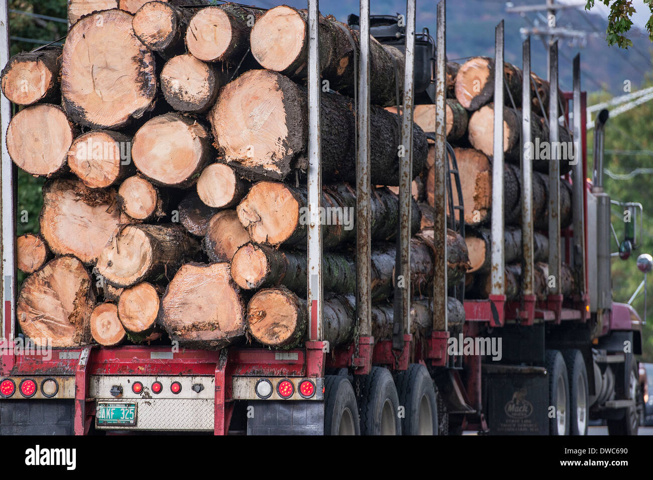 Truck hauling raw lumber harvested in Vermont, USA - Stock Image