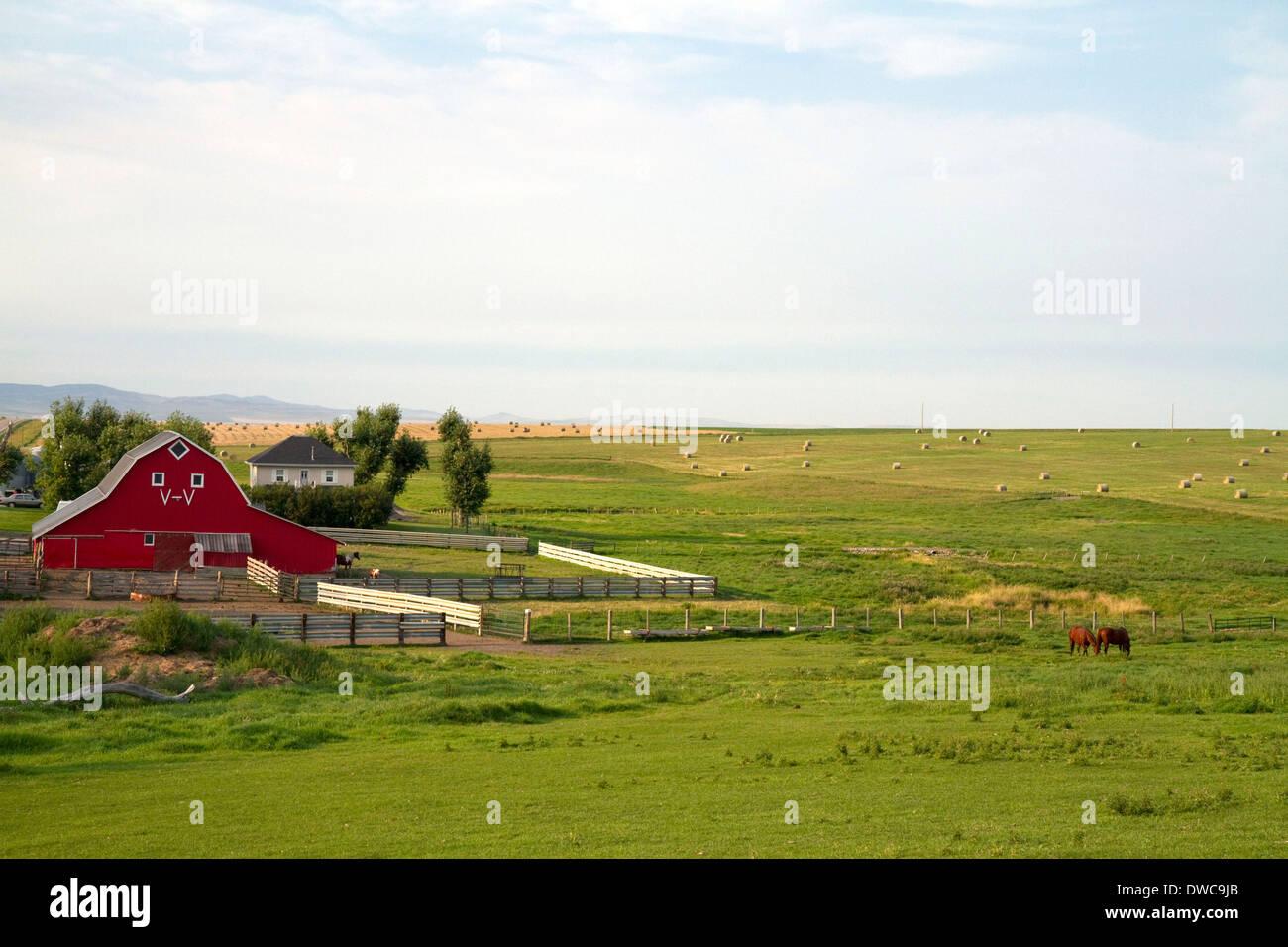 Red barn and farmland south of Pincher Creek, Alberta, Canada. - Stock Image
