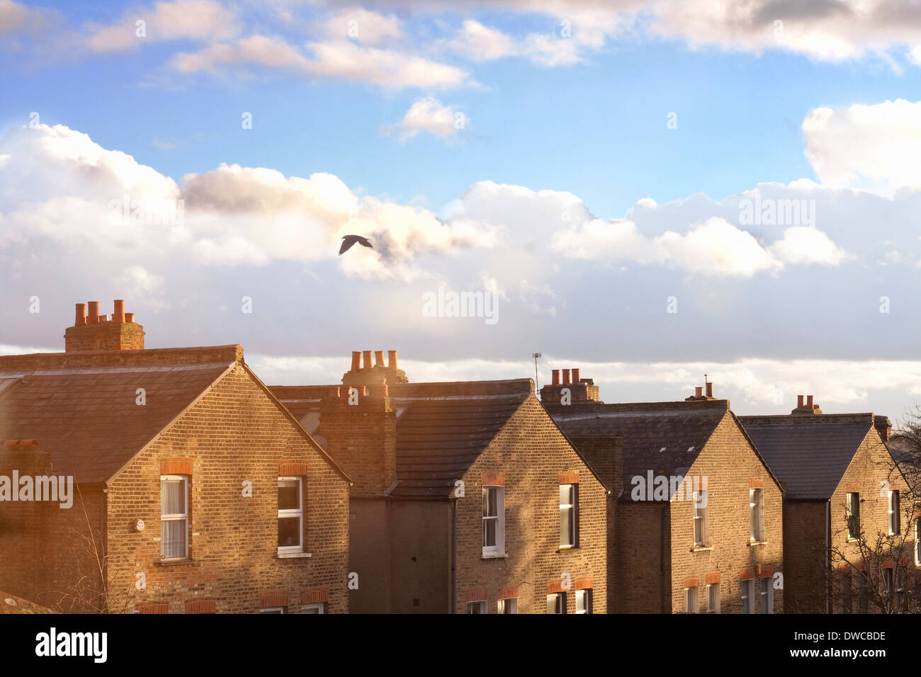 A row of terraced house rooftops Stock Photo