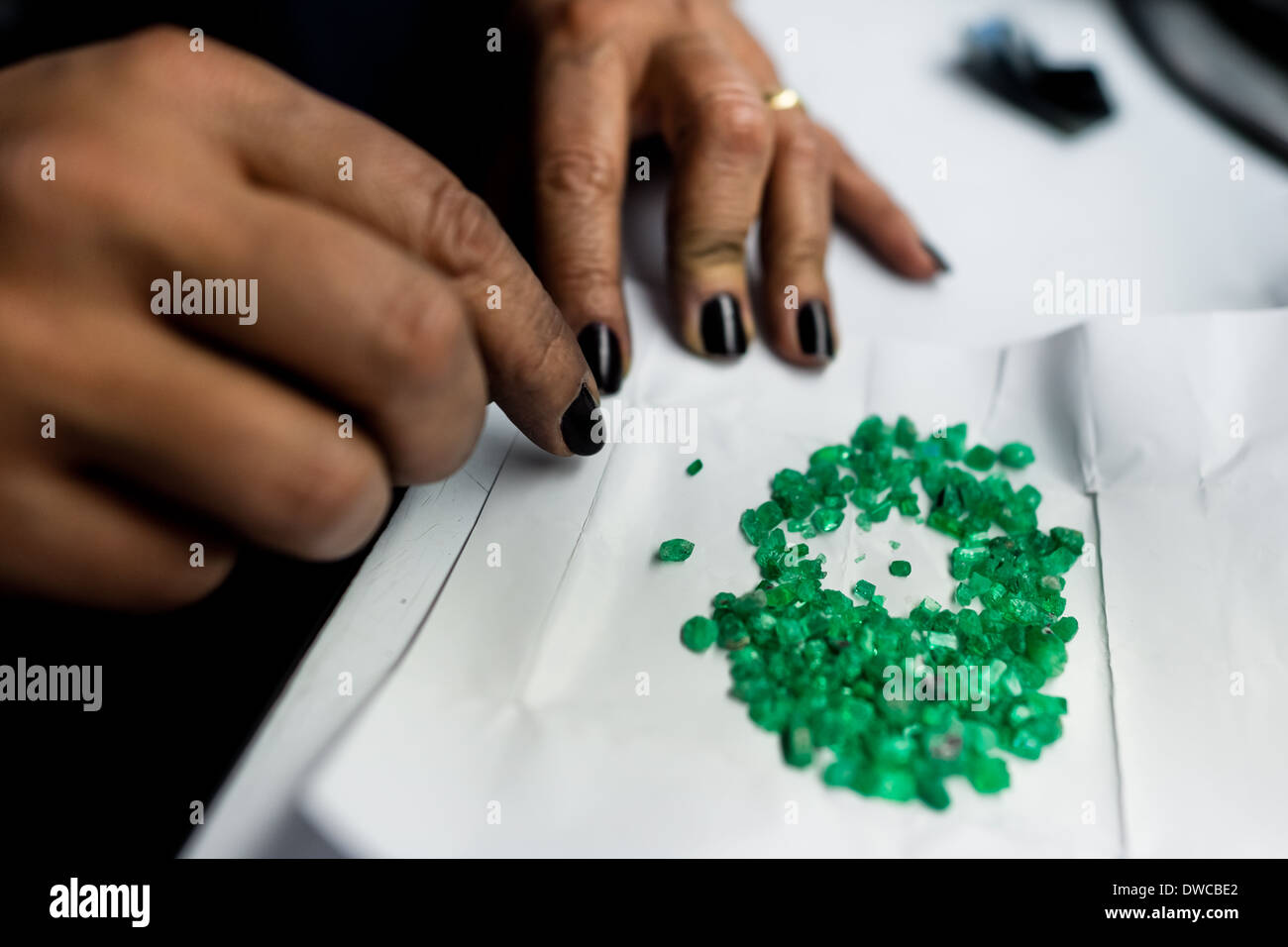 An emerald cutter sorts out rough emeralds seen before being processed in a cutting and polishing workshop in Bogota, Colombia. - Stock Image