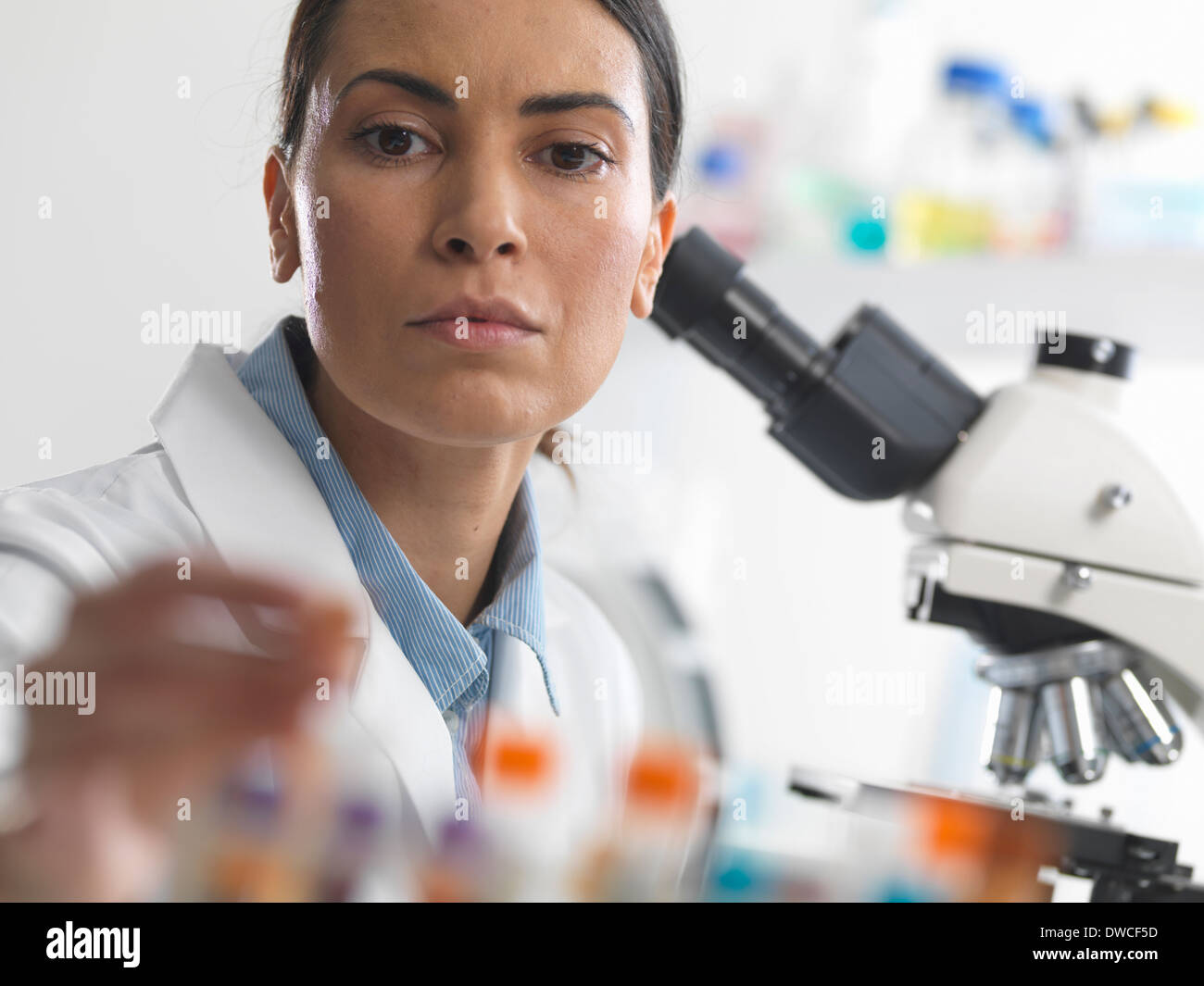 Female scientist about to view a blood sample under a microscope - Stock Image