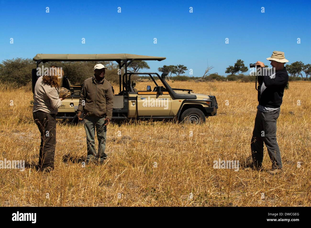 A couple of tourists shooting a land turtle camp near Savute Elephant Camp by Orient Express in Botswna in Chobe National Park . May 2013. - Stock Image