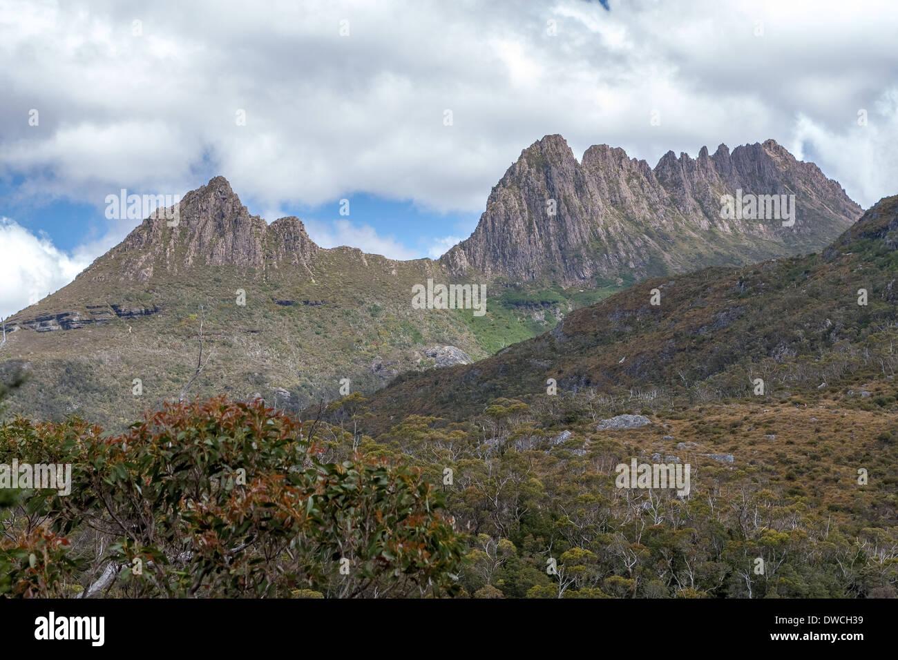 Cradle Mountain National Park Tasmania Australia -Cradle Mountain - Stock Image
