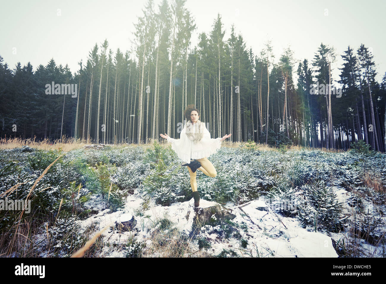 Mid adult woman practicing standing tree yoga pose in forest - Stock Image