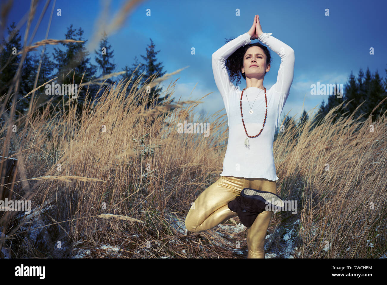 Mid adult woman doing standing tree yoga pose in forest - Stock Image