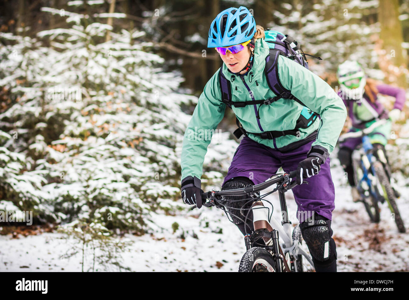 Two female mountain bikers riding through forest in snow - Stock Image
