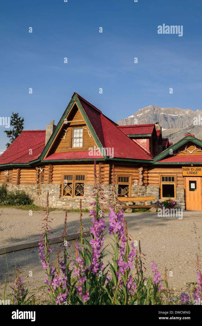 Num-ti Jah Lodge, fireweed, Bow Lake, Banff National Park, Alberta, Canada - Stock Image