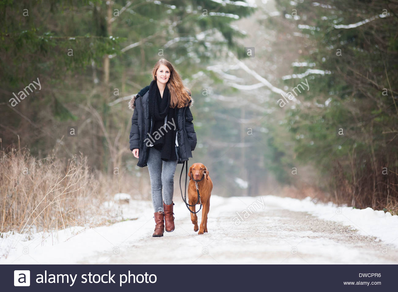 Young woman walking her dog on country road in winter - Stock Image