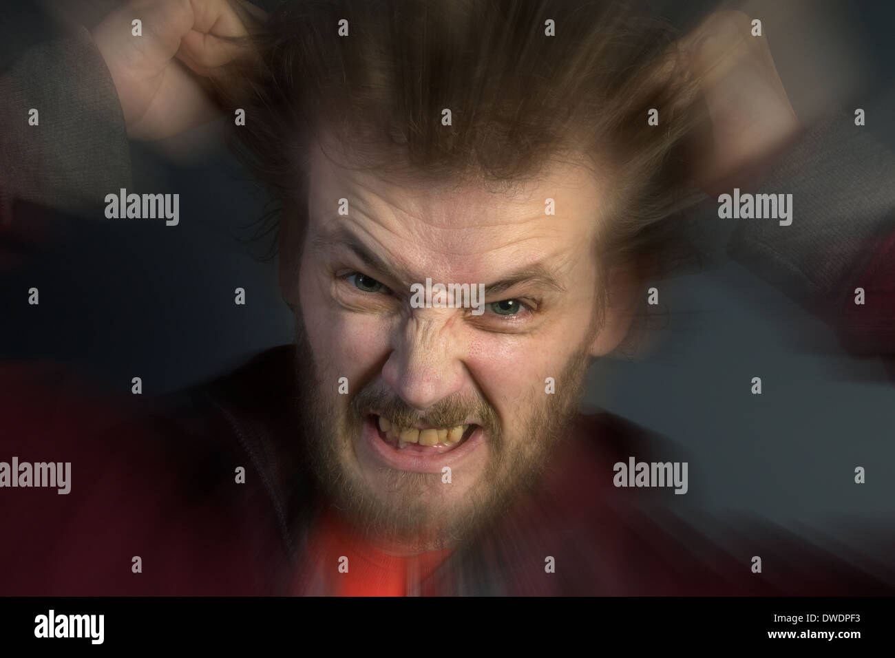 An angry man with a bad temper tearing his hair out. - Stock Image