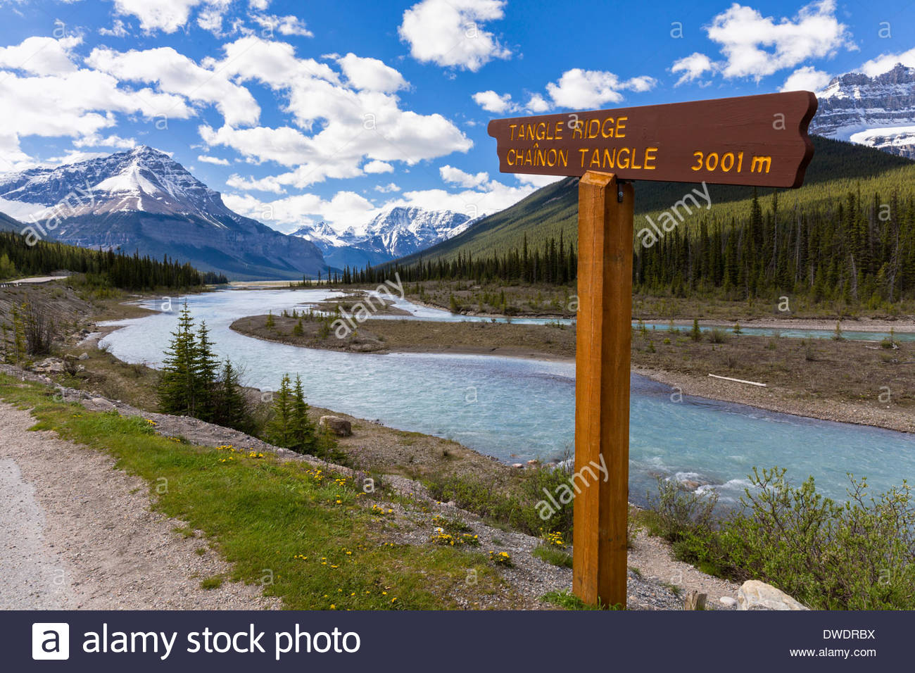 Canada, Alberta, Jasper National Park, Banff National Park, Icefields Parkway, sign at Athabasca River - Stock Image