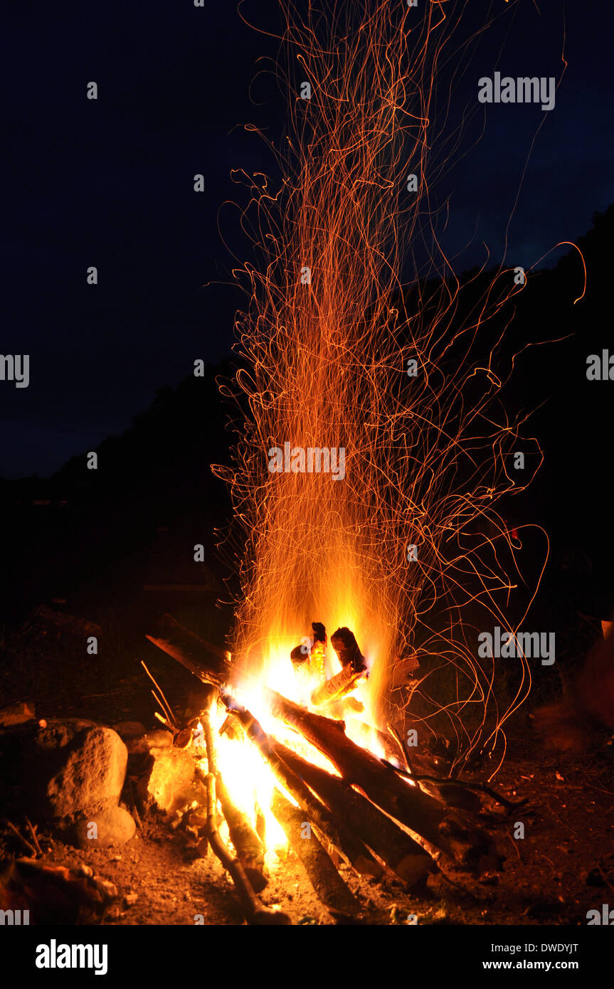 Campfire, bonfire in the forest - Stock Image