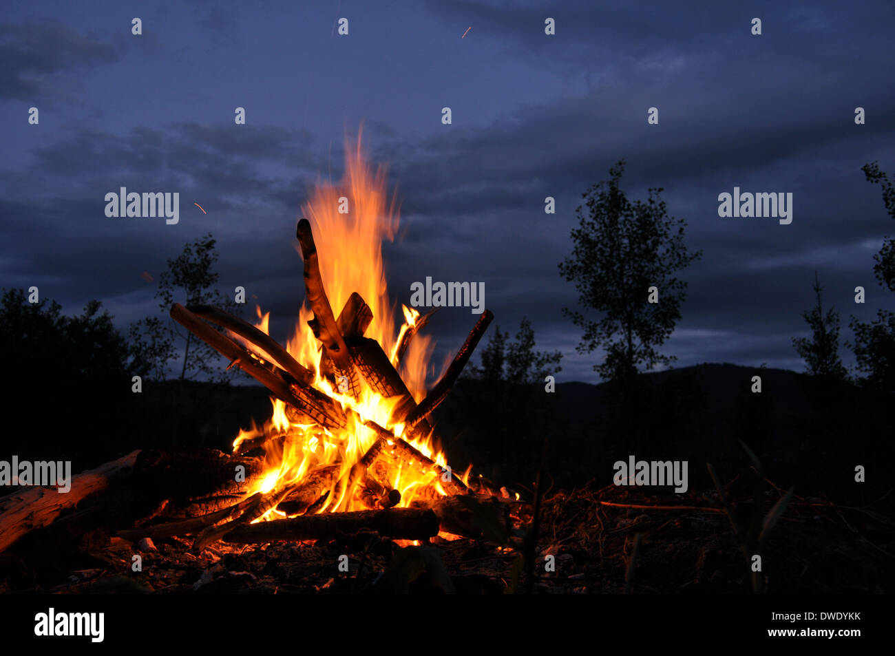 Bonfire, campfire in the forest, dusk - Stock Image