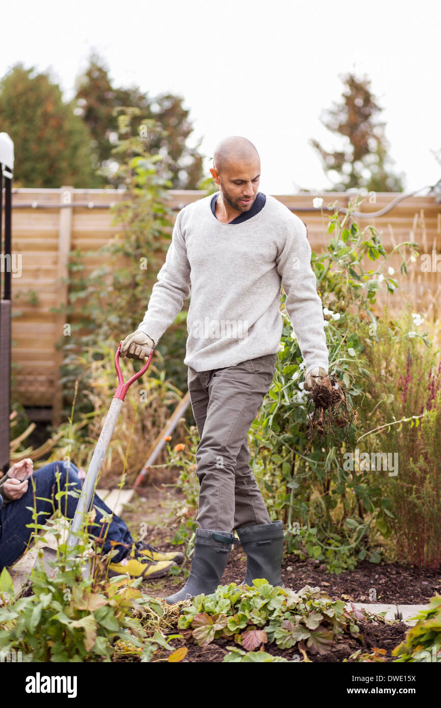 Mature man gardening at yard with children in background - Stock Image