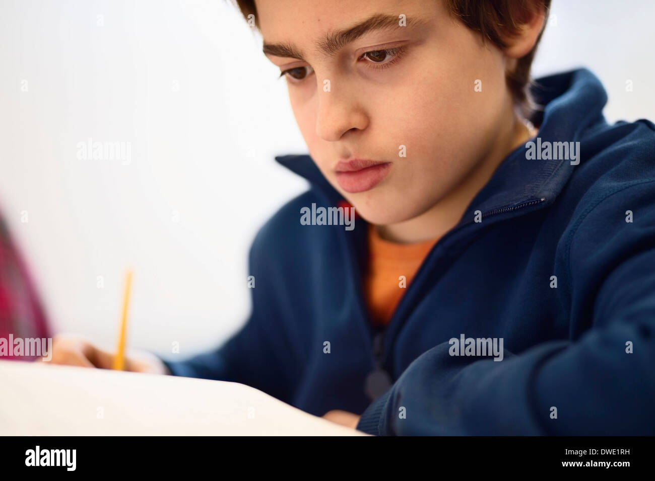 Concentrated schoolboy studying - Stock Image